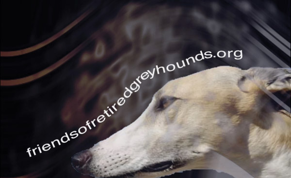 Greyhound Commercial Still